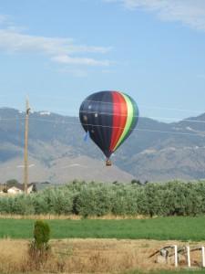 balloon 013